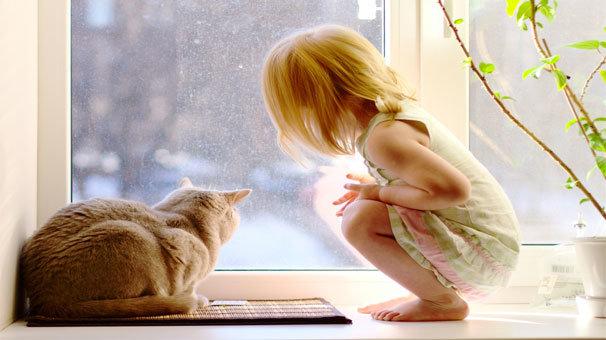 Çocuğunuza hayvan sevgisi kazandırın!