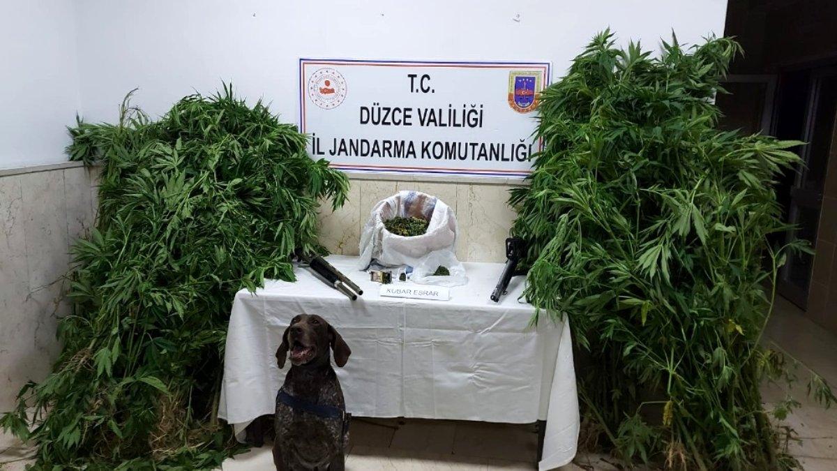 Düzce'de uyuşturucu maddelerle yakalanan şahıs gözaltına alındı