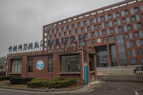 Wuhan'da incelemelerini sürdüren DSÖ'nün İngiliz üyesinden endişelendiren açıklama